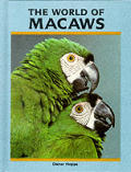World Of Macaws