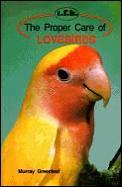 Proper Care Of Lovebirds