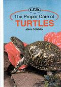 Proper Care Of Turtles