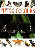 Flying Colours: Common Cate[r]pillars, Butterflies, and Moths of South-Eastern Australia