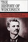 Urbanization & Industrialization 1873-1893: History of Wisconsin, Volume III