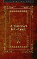 A Tenderfoot In Colorado (Timberline) by R. B. Townsend
