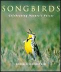 Songbirds Celebrating Natures Voice