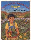 Carlos y la Planta de Calabaza / Carlos And The Squash Plant