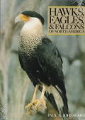 Hawks, Eagles and Falcons of North America: Biology and Natural History