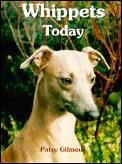 Whippets Today