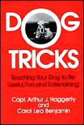 Dog Tricks Teaching Your Dog To Be Usefu