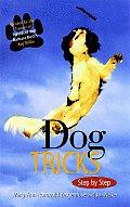 Dog Tricks Step By Step