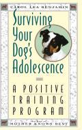 Surviving Your Dogs Adolescence A Positive Training Program