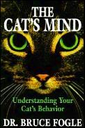 Cats Mind Understanding Your Cats Bevio