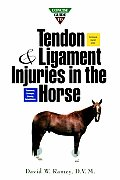 Concise Guide to Tendon and Ligament Injuries in the Horse