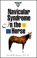Concise Guide To Navicular Syndrome In Horse
