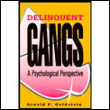 Delinquent Gangs A Psychological Perspec