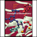 Principles of Biochemisty