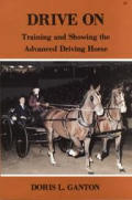 Drive On Training & Showing The Advanced Driving Horse