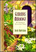 Glorious Morning An Invitation To Resu
