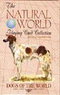 Dogs of the World Playing Cards (Natural World Playing Card Collection)