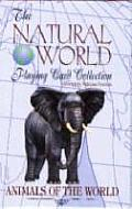 Animals of the World Playing Cards (Natural World Playing Card Collection)