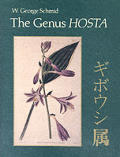 The Genus Hosta: Giboshi Zoku