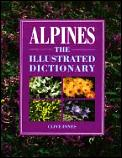 Alpines The Illustrated Dictionary