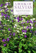 Book Of Salvias Sages For Every Garden