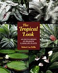Tropical Look An Encyclopedia Of Dramatic Landscape Plants