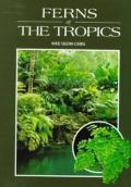 Ferns Of The Tropics