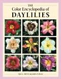 Color Encyclopedia Of Daylilies