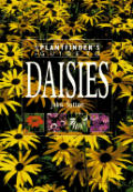 Plantfinders Guide To Daisies
