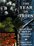 Year in Trees