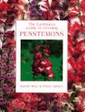 Gardeners Guide To Growing Penstemons
