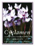 Cyclamen A Guide For Gardeners Horticulturi
