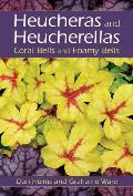 Heucheras and Heucherellas: Coral Bells and Foamy Bells
