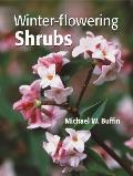 Winter Flowering Shrubs