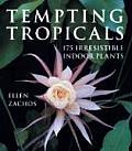 Tempting Tropicals 175 Irresistible Indoor Plants
