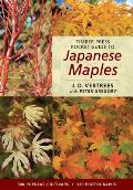 Timber Press Pocket Guide to Japanese Maples (Timber Press Pocket Guides) Cover