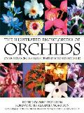 The Illustrated Encyclopedia of Orchids
