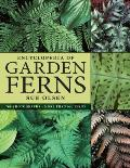 Encyclopedia of Garden Ferns