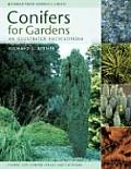 Conifers for Gardens An Illustrated Encyclopedia