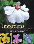 Impatiens The Vibrant World of Busy Lizzies Balsams & Touch Me Nots