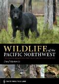 Wildlife of the Pacific Northwest: Tracking and Identifying Mammals, Birds, Reptiles, Amphibians, and Invertebrates Cover