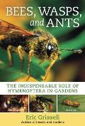 Bees, Wasps, and Ants: The Indispensable Role of Hymenoptera in Gardens Cover