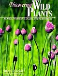 Discovering Wild Plants Alaska Western Canada The Northwest