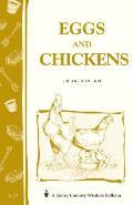 Eggs & Chickens