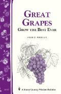 Great Grapes Grow the Best Eve Cover