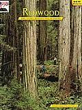 Redwood: The Story Behind the Scenery