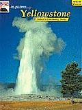 In Pictures Yellowstone: The Continuing Story