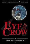 Boy Sherlock Holmes 01 Eye Of The Crow