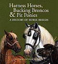 Harness Horses, Bucking Broncos & Pit Ponies: A History of Horse Breeds