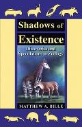 Shadows Of Existence Discoveries & Specu